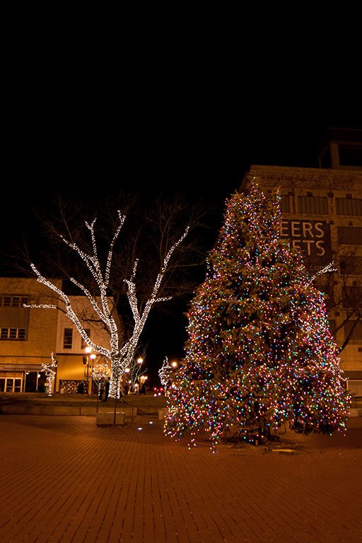 Commercial holiday lighting creative outdoor lighting commercialholidaylighting 23 audiocablefo light collections