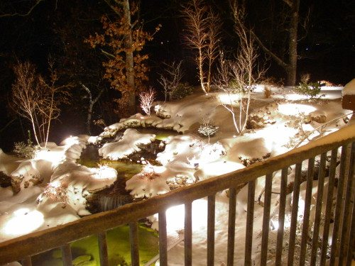 Basic Design Elements Of Landscape Lighting